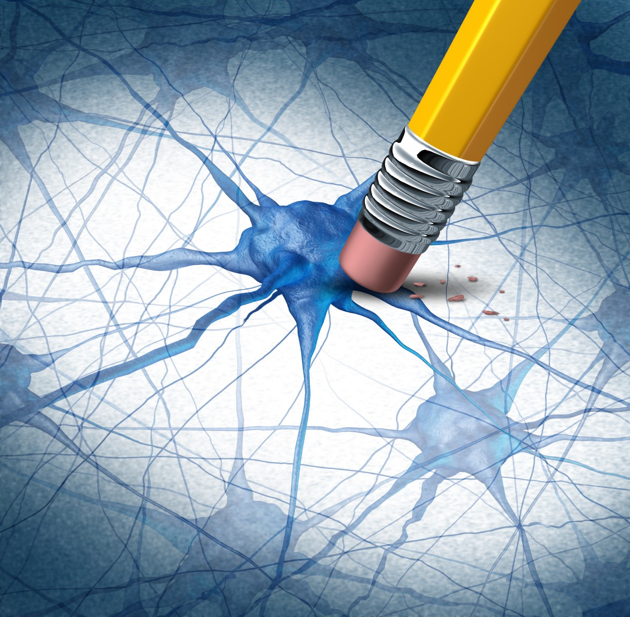 Researchers Inhibit Production of Beta Amyloid Peptides in Alzheimer's Disease Mouse Models