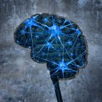 $10 million fund for brain research