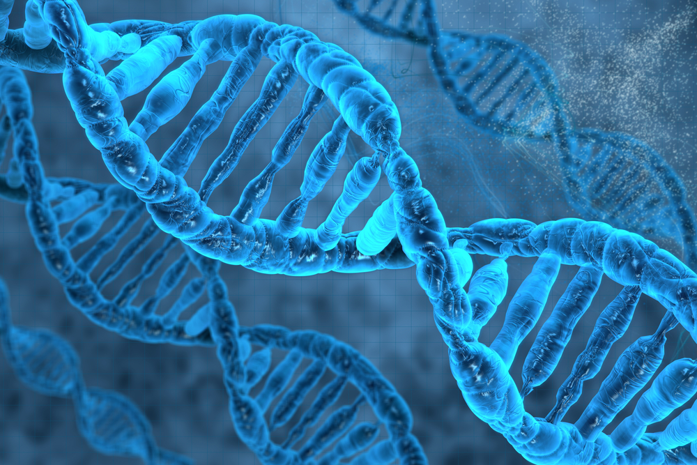Genes and Alzheimer's risk