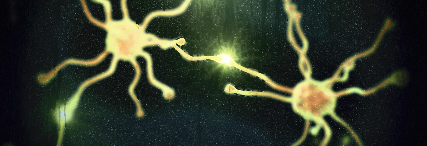 Increasing the Activity of Certain Type of Nerve Cell Restores Cognition, Mouse Study Shows