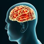 Brain protein therapy