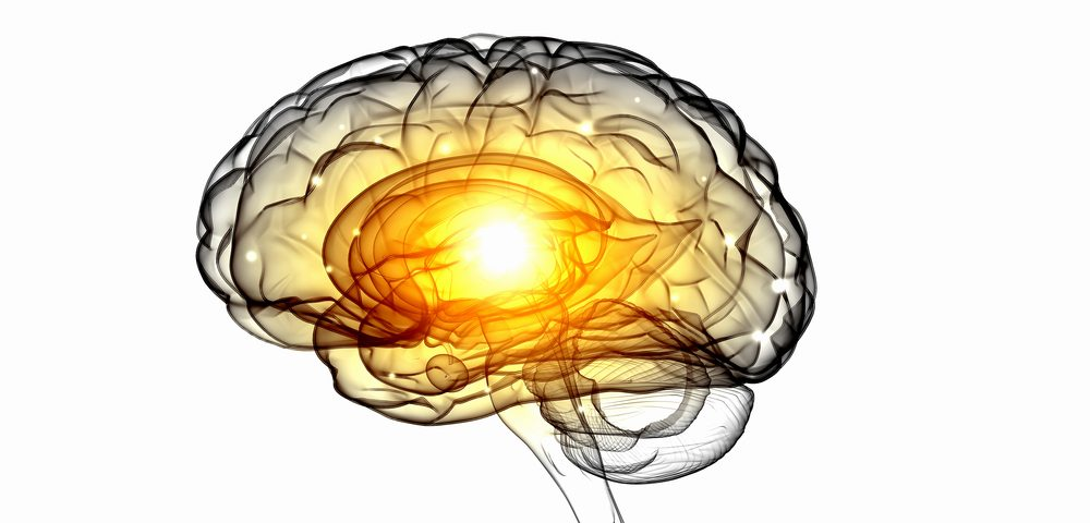 'Prime of Life Brain Initiative' Targets Neurodegenerative Diseases