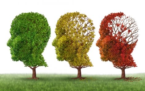 Bryostatin-1 Can Reverse Cognitive Decline in Moderate-to-Severe Alzheimer's, New Data Shows