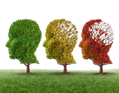 TREM2 Protein May Slow Memory Impairment in Alzheimer's, Study Suggests