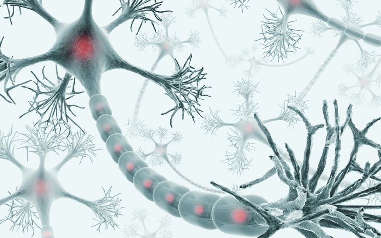 Phase 1 Trial for Potential Alzheimer's Therapy Yields Positive Results