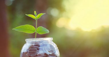 infection | Alzheimer's News Today | Research Funding | A plant seedling grows out of a jar of money